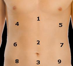 loudista-abdomen